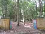 hutan_wisata sungailiat bangka